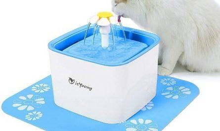 Fonte-de-agua-para-caes-e-gatos