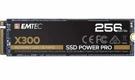 Emtec X300 M.2 SSD Power Pro 256 GB